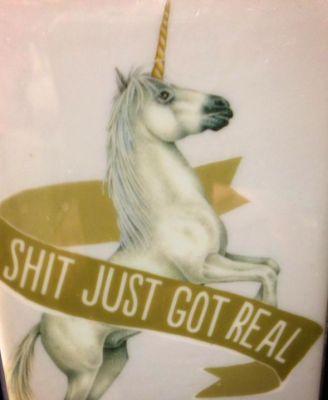 Unicorn_Shitjustgotreal_Charlie